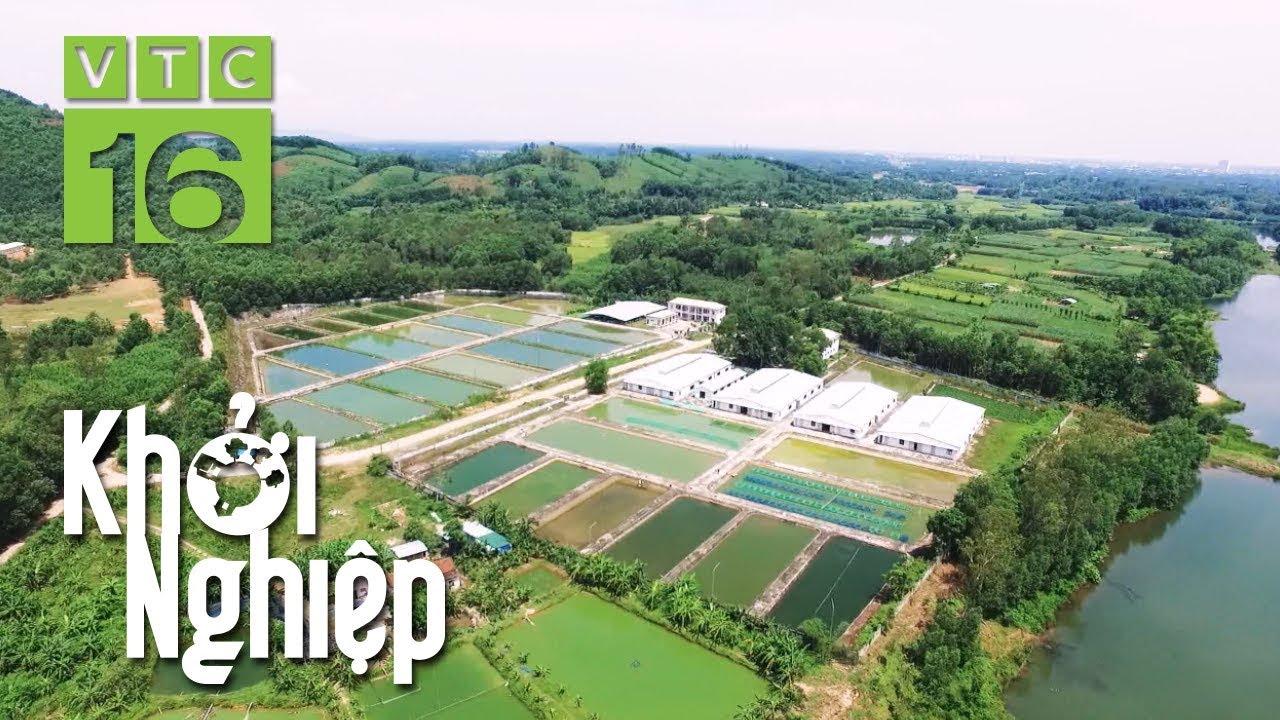 Khởi nghiệp từ nông nghiệp với số vốn 300 triệu   Khởi nghiệp 493   VTC16