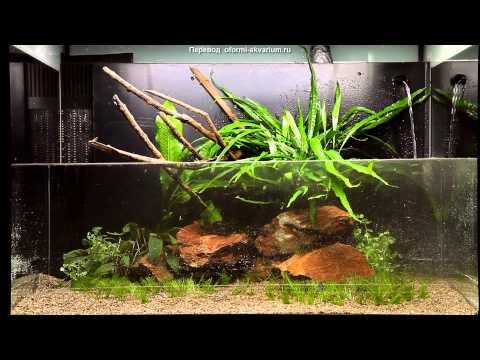 Оформление аквариума Контраст камней на 100 литров