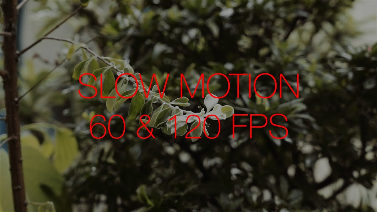 Sony A7S Slow Motion 60FPS & 120FPS Comparison