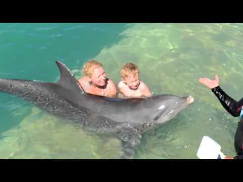 Dolphinarium Cayo santa maria, Cuba.2016