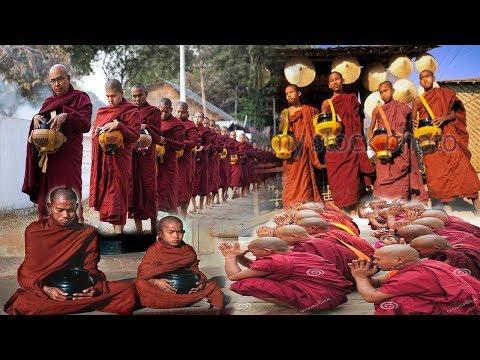 দেখুন আল্লাহর বিচার আল্লাহই করতেছে, মিয়ানমারে বৌদ্ধরা সব না খেয়ে মরতেছে