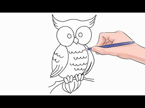 How to Draw an Owl Easy Step by Step - YouTube