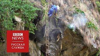 Добраться до улья: как работают непальские охотники за медом