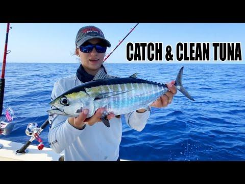 CATCH & CLEAN TUNA 🍣🎣 How To Catch Blackfin Tuna | Gale Force Twins