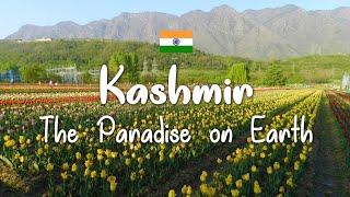 Kashmir family trip