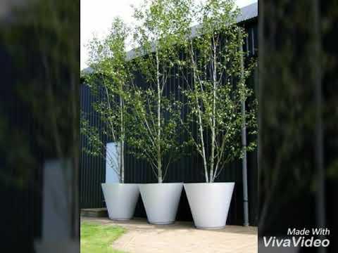 Pabrik cetakan pot bunga 081330258332 - YouTube d6dafb7c39