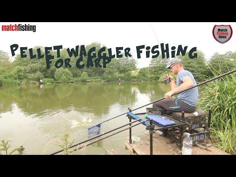 Pellet Waggler Fishing For Carp