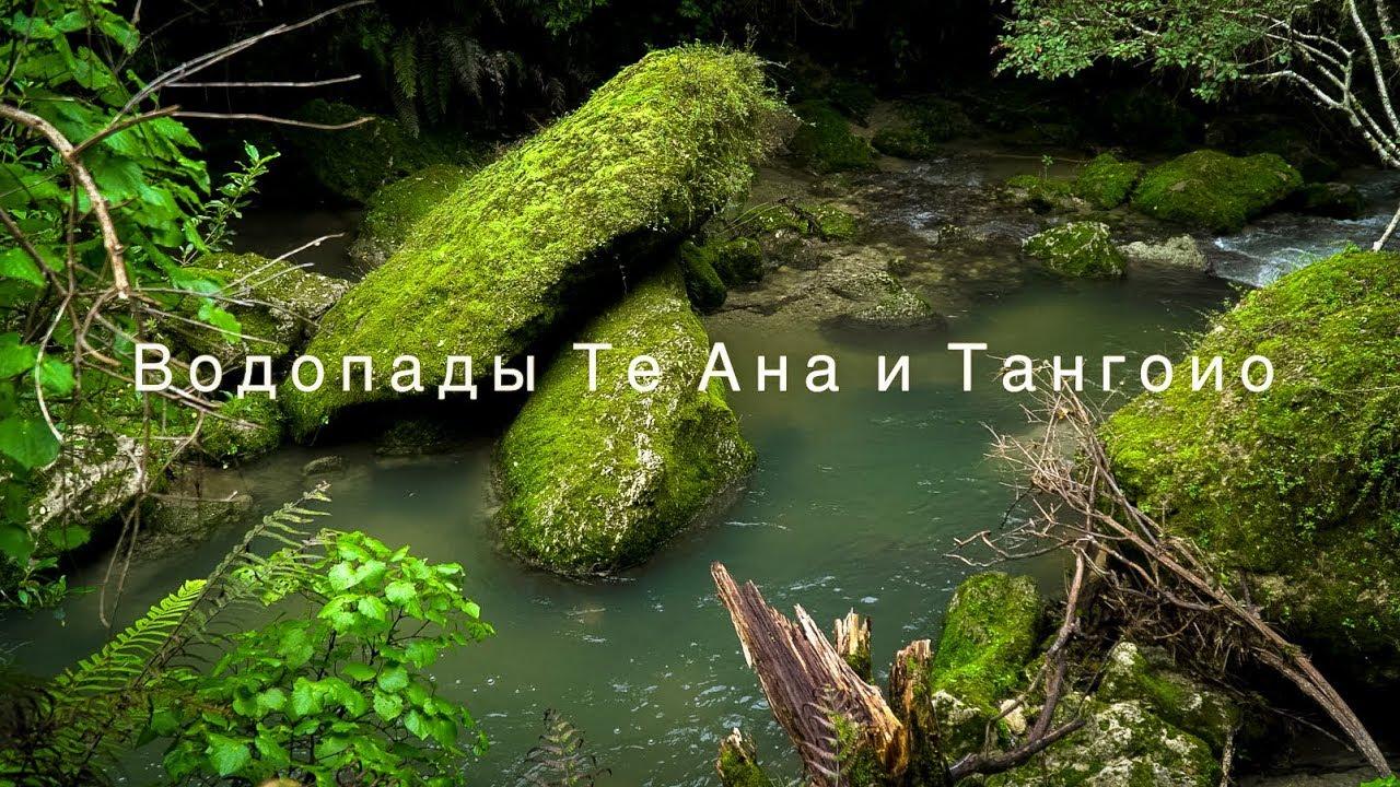 Водопады Те Ана и Тангоио | Жизнь в Новой Зеландии