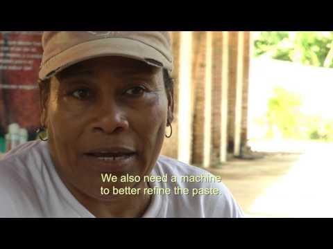 CACAO'S CATA: A Rural Chocolate Venture