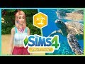 Save the Turtles! - Sims 4 Island Living // iHasCupquake
