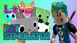 (Roblox) Pet Simulator! MOON Coin Grinding! //M00N//Coin's//Pet's// (RoadTo400)