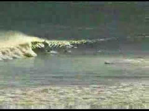 Surfing Nova Scotia Coastlines Lawrencetown Beach