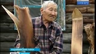 До сих пор живут в стойбищах, охотятся на изюбров и пасут оленей эвенки в Бодайбинском районе
