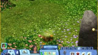 Les Sims 3: Animaux et cie: tas de feuille fumante: Indice pour les Saisons?!