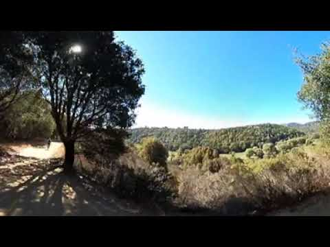 Going Down Brandon Trail | 1.5 Miles Downhill | Lake Chabot, Castro Valley CA | 360° Video