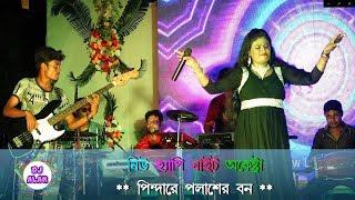Pindare Palaser Ban  পিন্দারে পলাশের বন্  New Happy Night arkestra  Dj Alak Stage Program