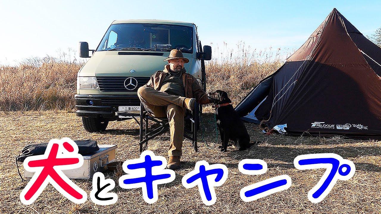 【犬とキャンプ】愛犬モンちゃんとふたりで河原へキャンプにいったんだけど、超トラブル続きで泣きそう