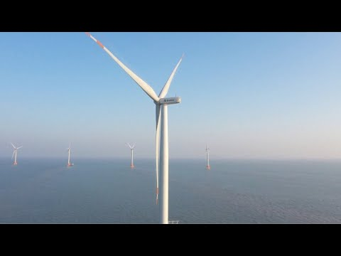 Large-scale offshore wind farm put into operation in E China