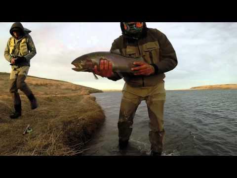 Fly Fishing The Blackfeet Indian Res. 2015
