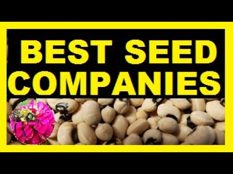 My Favorite Seed Companies:  Where to Buy Seeds