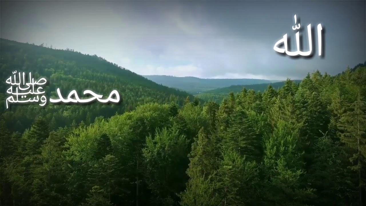 Ramadan Status ll Naat Status ll Islamic Status