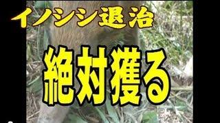 イノシシの被害で困っている人にイノゲット www.sawada-s.com 鹿にも通...