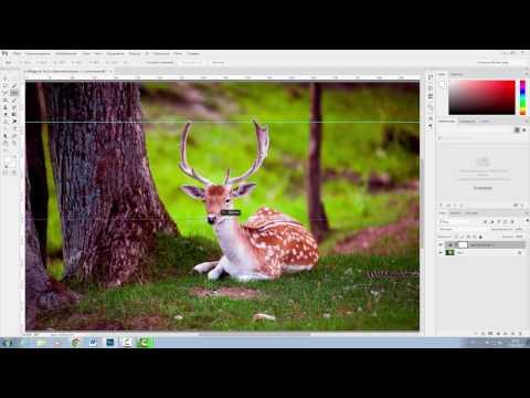 Adobe Photoshop CC 2017. Группа Инструментов ПИПЕТКА