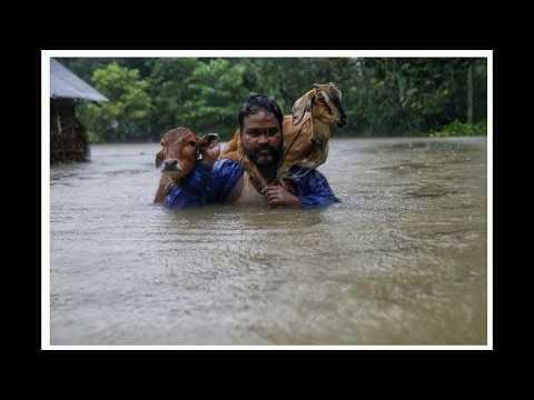 सप्तरी डुबानमा । ८०% भुमी जलमग्न । FLOOD HITS SAPTARI. 80% LAND DROWNED...