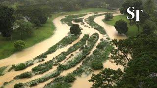 Bishan-Ang Mo Kio park after heavy rain on Jan 1