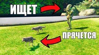 ПРЯТКИ ЗА ЖИВОТНЫХ В GTA 5 ONLINE (Смешные моменты Gta5)
