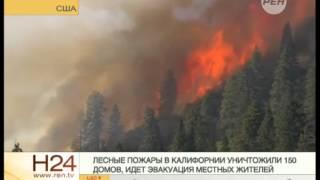 Нудисты оказались виновниками крупных пожаров(, 2014-09-17T09:01:56.000Z)