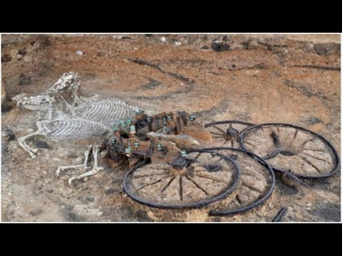 Раскрыта тайна древней колесницы, которая была захоронена с лошадьми и наездником