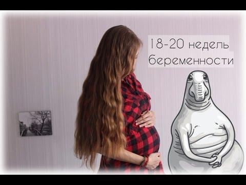 Дневник беременности: 18-20 неделя/Первые шевеления