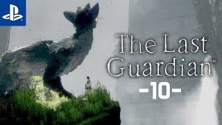 Strażnicy #10 The Last Guardian | PL | Gameplay | Zagrajmy w