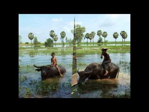 popular khmer songs - saravan - cambodia music karaoke -  comedy khmer song