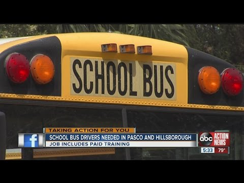 HELP WANTED: Pasco, Hillsborough Schools hiring bus drivers