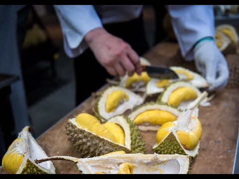 [EVENT!] Funology SG53 Durian Buffet Party @ Element at Tras Street!