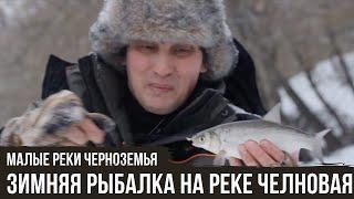 Зимняя рыбалка на реке Челновая Малые реки Черноземья 5 10