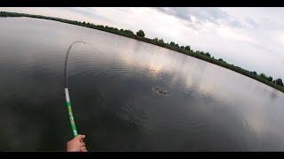 Ловля сазана,карпа на удочку Рыбалка 2020 Рыбалка на удочку#рыбалка#карп#сазан#карась