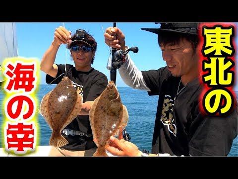 東北の海は豊か過ぎる美味しい魚が入れ食い