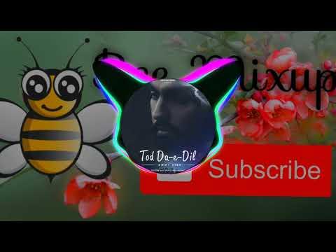 tod-da-e-dil-(-bee-mixup-)-,-beautiful-song-tod-da-e-dil-(-punjabi-album-song)