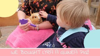 WE ALMOST BOUGHT LYRA A GUINEA PIG! | CEFN MABLY FARM PARK