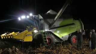 kukurydza 2012 Niewieścin Claas Tucano  NH