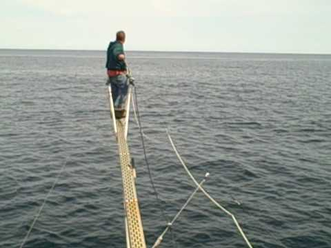 Blue fin tuna fishing in the gulf of maine harpoon youtube for Maine out of state fishing license