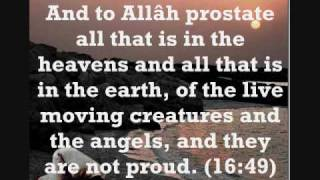 Verses of Sujood (Prostration) in the Qur