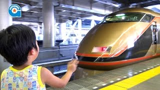 東武線と貨物列車を見に行きました【がっちゃんの電車で行こう!シリーズ】 thumbnail