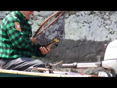 Maine Guide Salmon Fishing