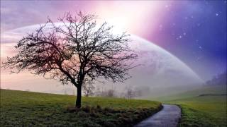 Spacemind - Dream Phenomena