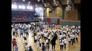 בית ספר רוקד שילגיה