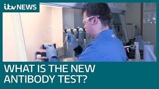 What is the new coronavirus antibody test? | ITV News